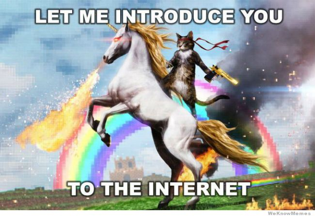Let me introduce you to the Internet meme