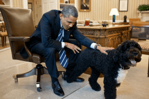 Barack Obama también tuvo mascota presidencial