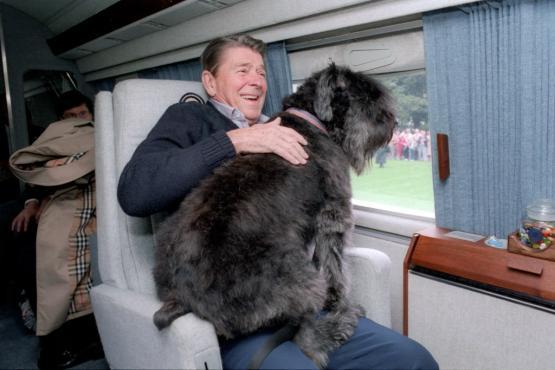 Ronald Reagan tuvo una gran mascota presidencial