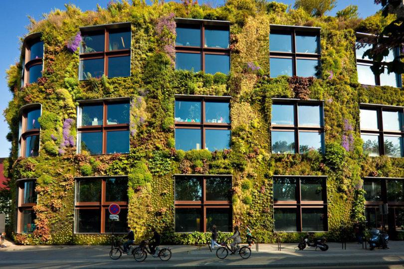 GALERÍA: ¿Por qué tener horizontales cuando pueden ser jardines verticales?
