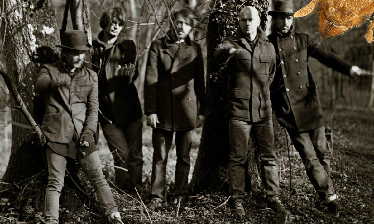Investigadores nombran a una hormiga en honor a Radiohead