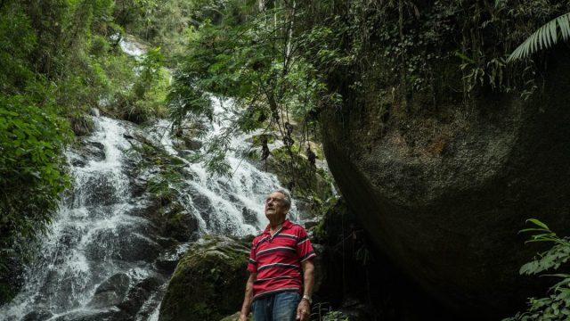 Antonio Vicente es un hombre brasileño que plantó 31 hectáreas de selva