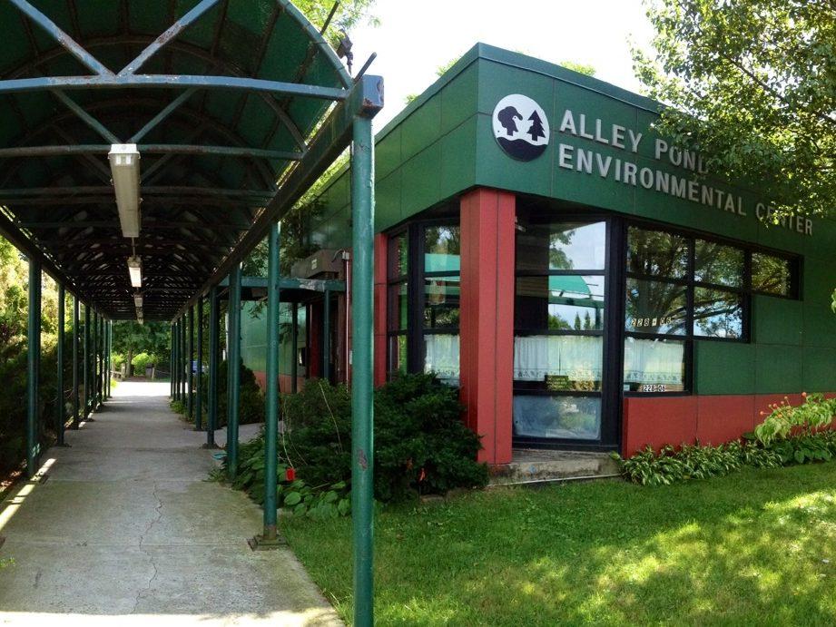 Tortuga de 100 años fue robada del Centro Ambiental Alley Pond