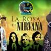 fails la rosa de guadalupe Kurt Cobain