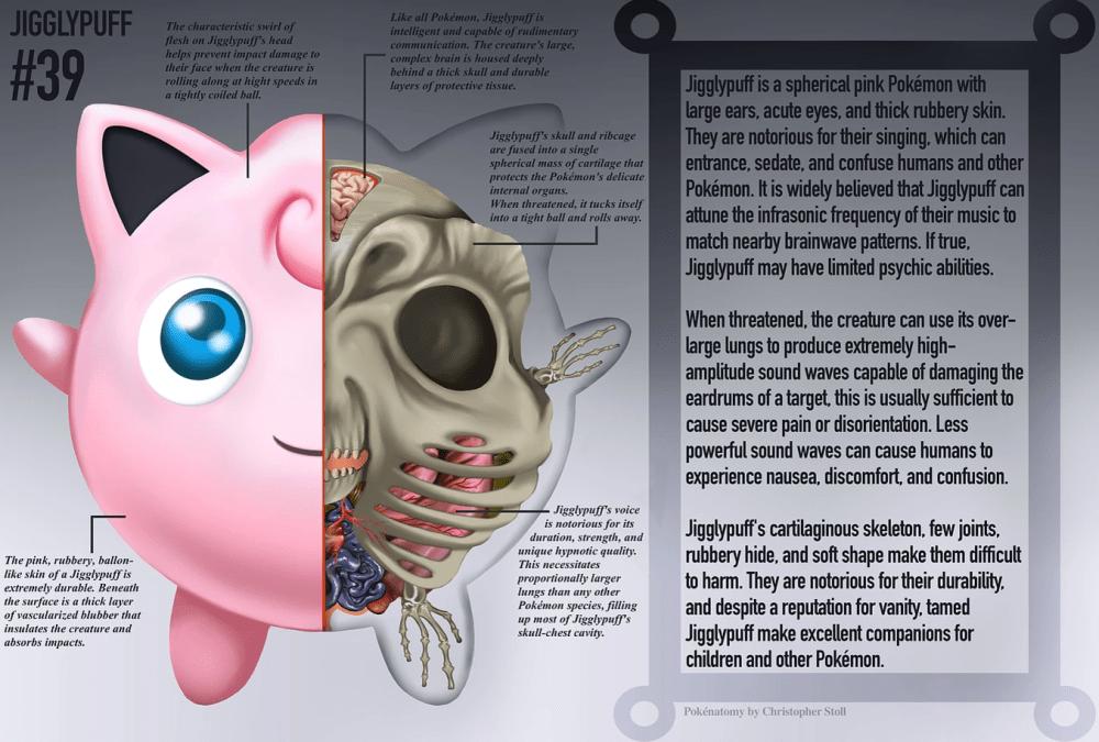 PokéNatomy, un estudio de la anatomía de los pokémon, como Jigglypuff