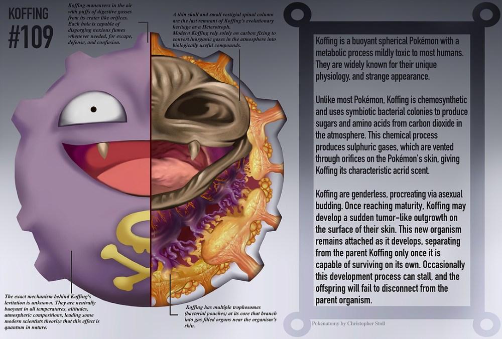 PokéNatomy, un estudio de la anatomía de los pokémon, como Koffing