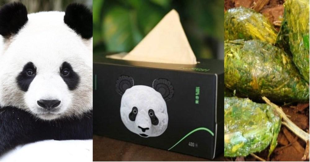 Panda Poo son pañuelos y papel hecho de popó de panda