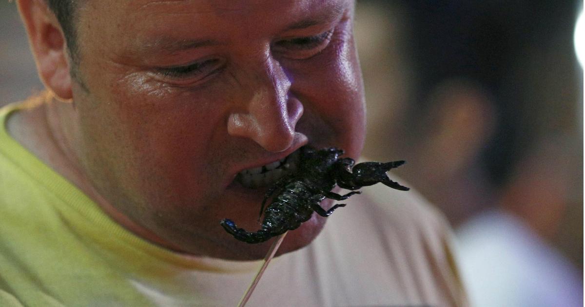 Insectos, Chapulines, Comida, Estados Unidos, Gringos, Comer insectos, Comida Mexicana