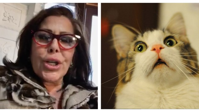 Alejandra Guzman abusa del botox