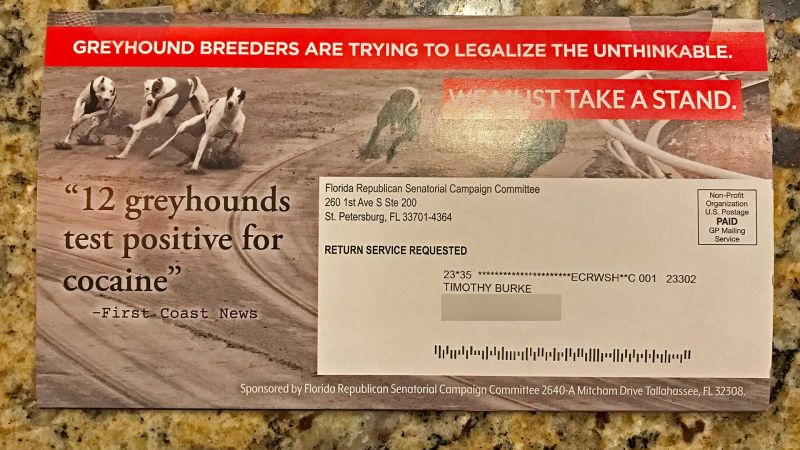 Galgos perros cocaína senador Estados Unidos Dana Young