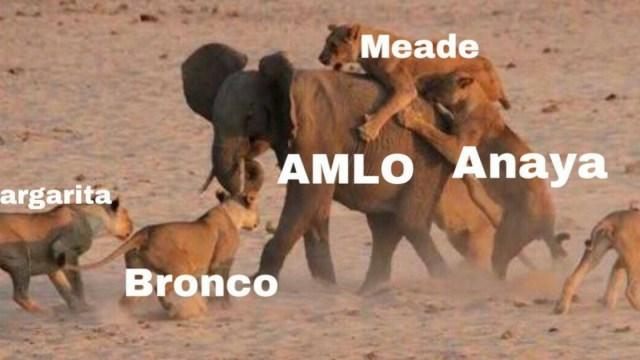 Amlo memes debate presidencial