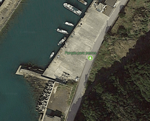 Perro persigue al camión de Google Street View