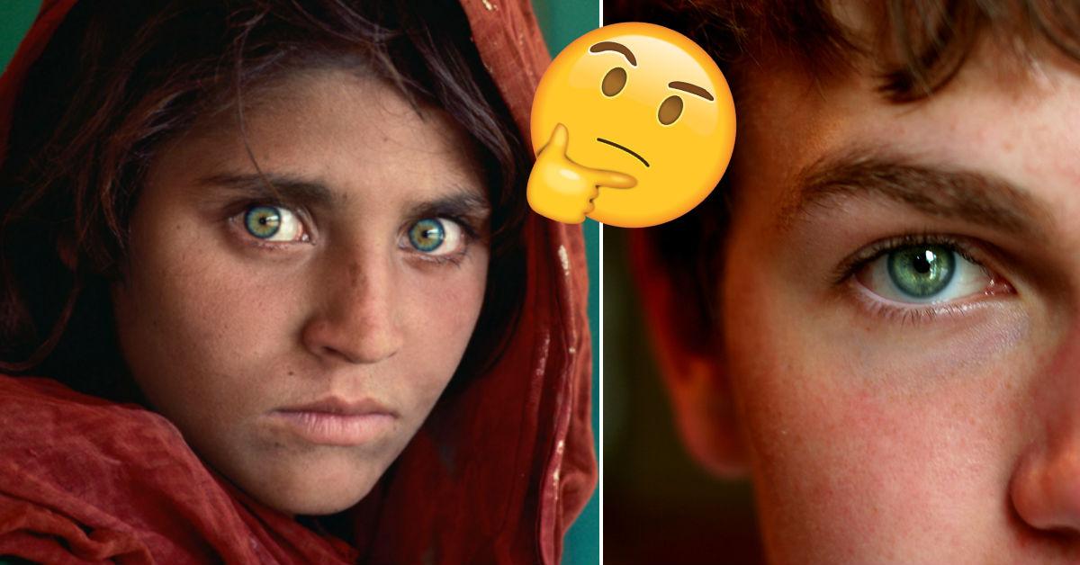 Por Que Hay Personas Que Tienen Ojos Verdes Erizos