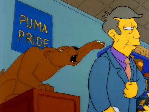 Partido América Pumas Goles Memes Reacciones