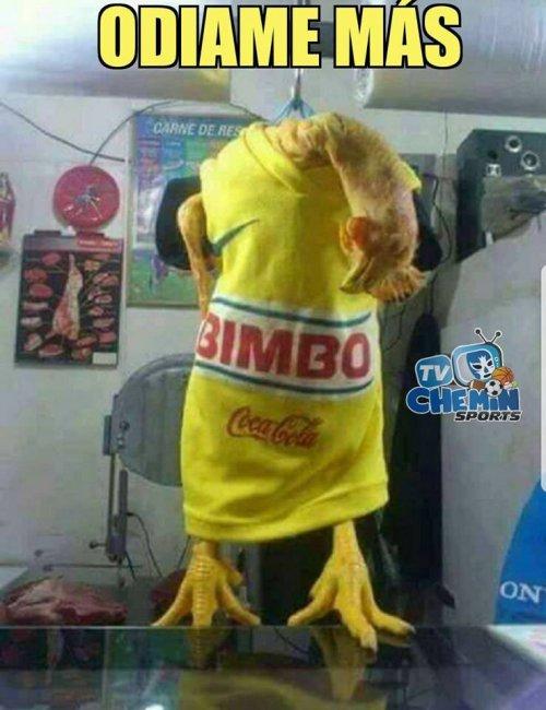 Memes America Santos Semifinal