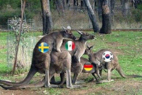 Memes Corea México Octavos