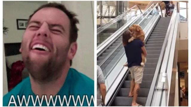 Perrito miedoso video viraliza Cargado bebé