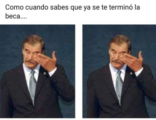 Memes Vicente Fox