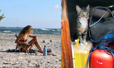 Dejó su trabajo y ahora viaja por el mundo con su gatita