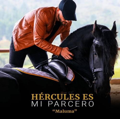 Maluma caballo Instagram