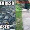 Memes Del Regreso A Clases, Memes, Regreso A Clases, Mejores Memes, Regreso A Clases Memes, Escuela Memes