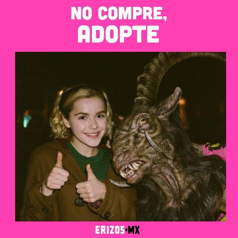 Memes de la nueva serie de Sabrina, la bruja adolescente