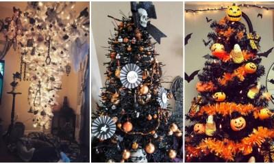 Árboles Halloween Navidad Instagram Redes Sociales