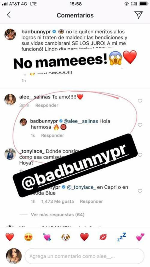 Bad Bunny Ale Salinas