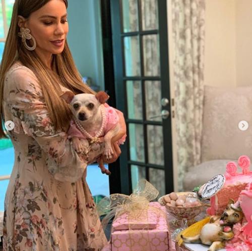 La extravagante fiesta que Sofía Vergara organizó para su nieta