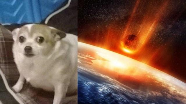 Científicos alertan asteroide; puede colisionar con Tierra