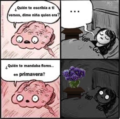 """Historia detrás """"Ramito de violetas"""" con memes 14 de febrero"""