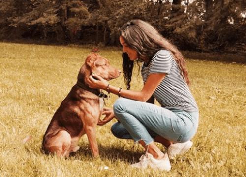 Hija de Eduardo Capetillo y Bibi Gaytán lamenta muerte de su perrito