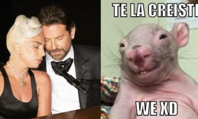 Lady Gaga desmiente romance con Bradley Cooper