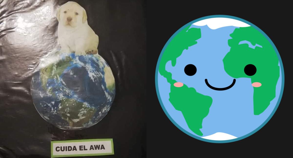 Día Mundial Medio Ambiente, Medio Ambiente, Cuidar Medio Ambiente, Cómo Cuidar, Qué Hacer Para Cuidar El Medio Ambiente, Cuidar El Medio Ambiente
