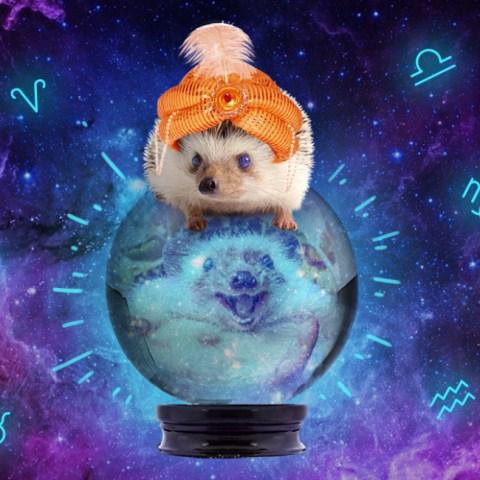 Los horóscopos del 2020 según tu signo zodiacal