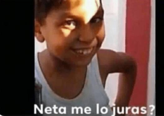 """Los memes y el origen de """"Neta, me lo juras?"""""""