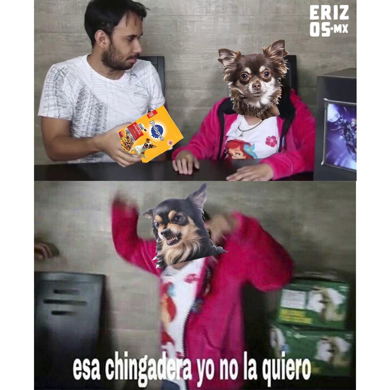 Meme pedigree es malo para los perros