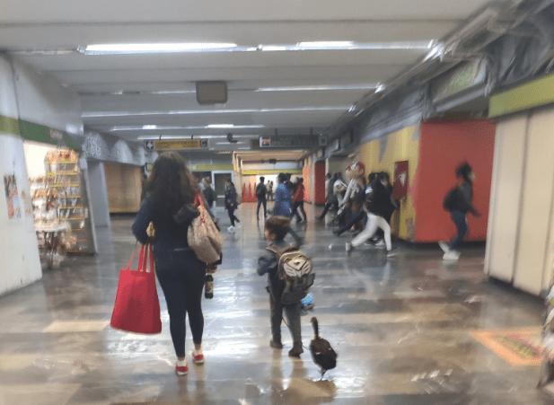 pato bruna en el metro de la cdmx con tenis