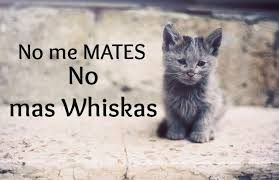 whiskas mata gatos