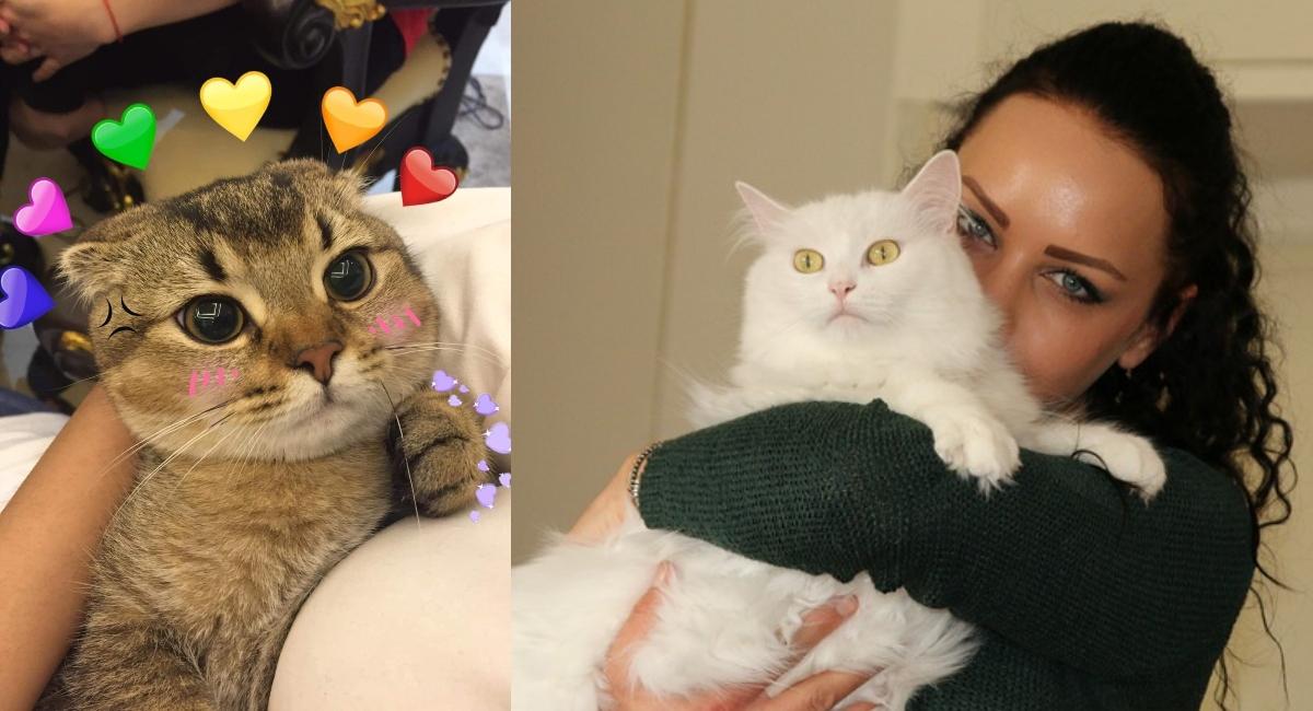 Mujeres que aman a los gatos son las más leales y tiernas
