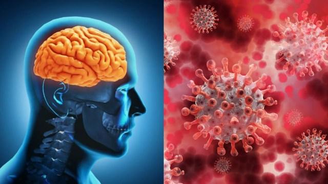 Pacientes con covid podrian tener daños en el cerebro