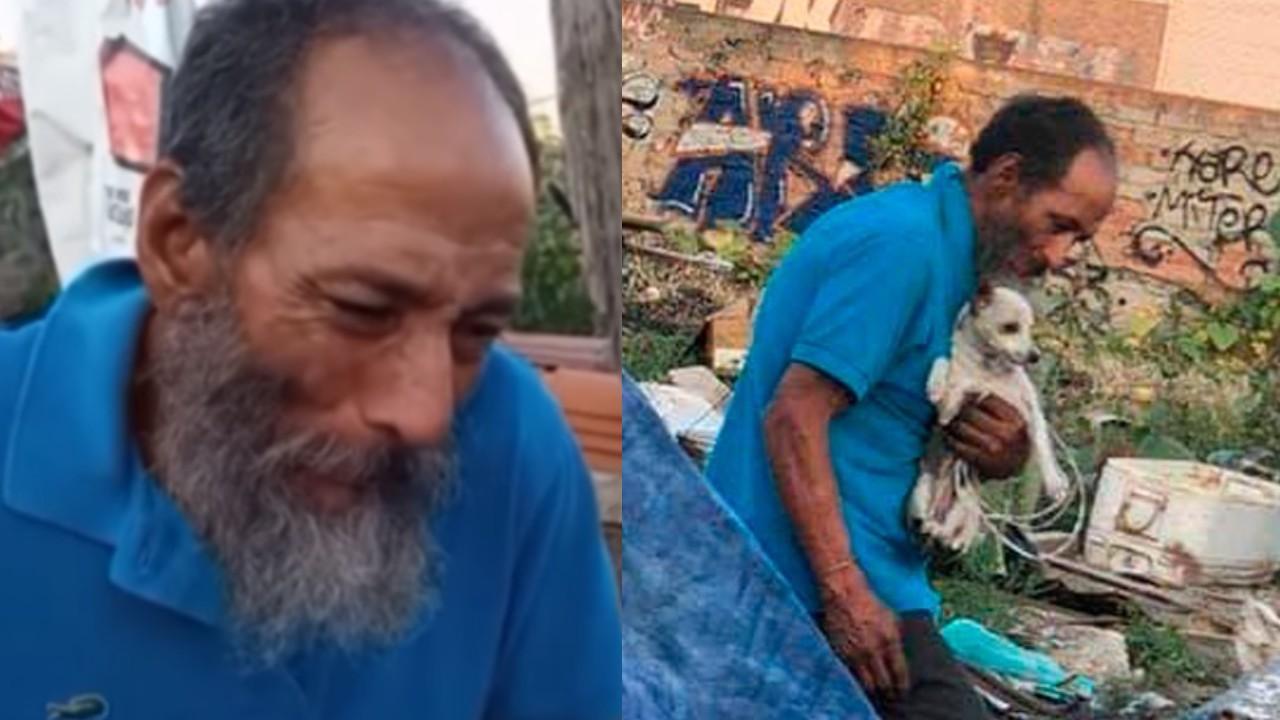 Donan comida envenenada para perros y mueren 17
