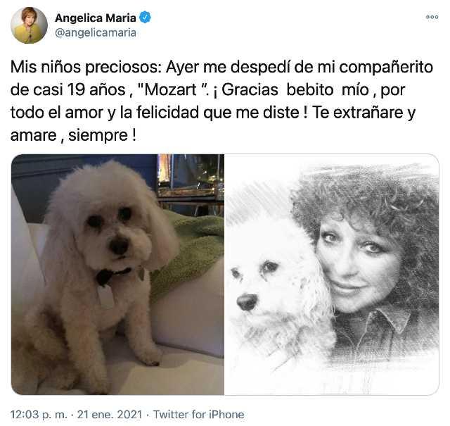 Angélica María de luto por muerte de su perro Mozart