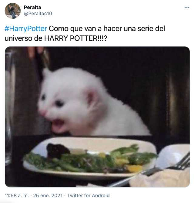 Reacciones a la serie de Harry Potter