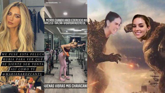Bárbara de Regil se peleó con Mariana Rodríguez con estos memes