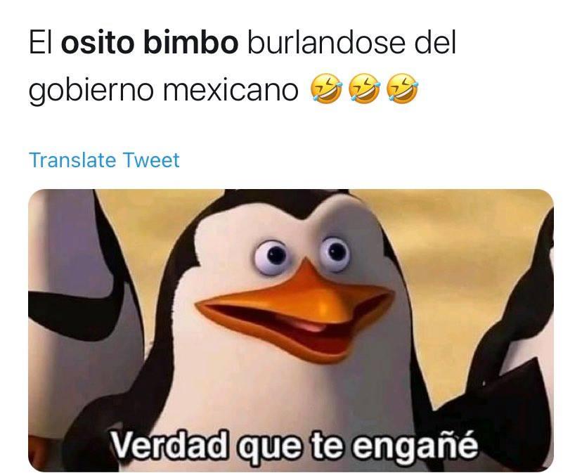 memes bimbo pinguino