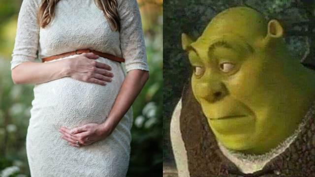 Mujer embarazada meme Shrek