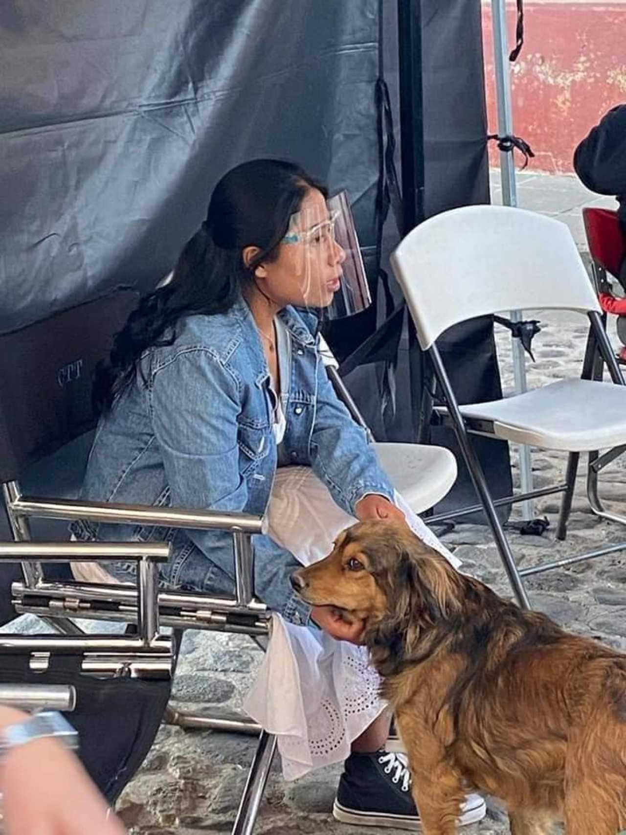Yali mostró su amor por un perrito callejero en las filmaciones de su nueva película