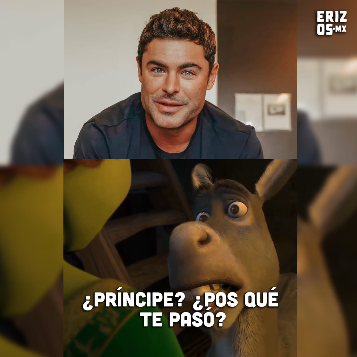 Meme de Zac Efron con el burro de Shrek