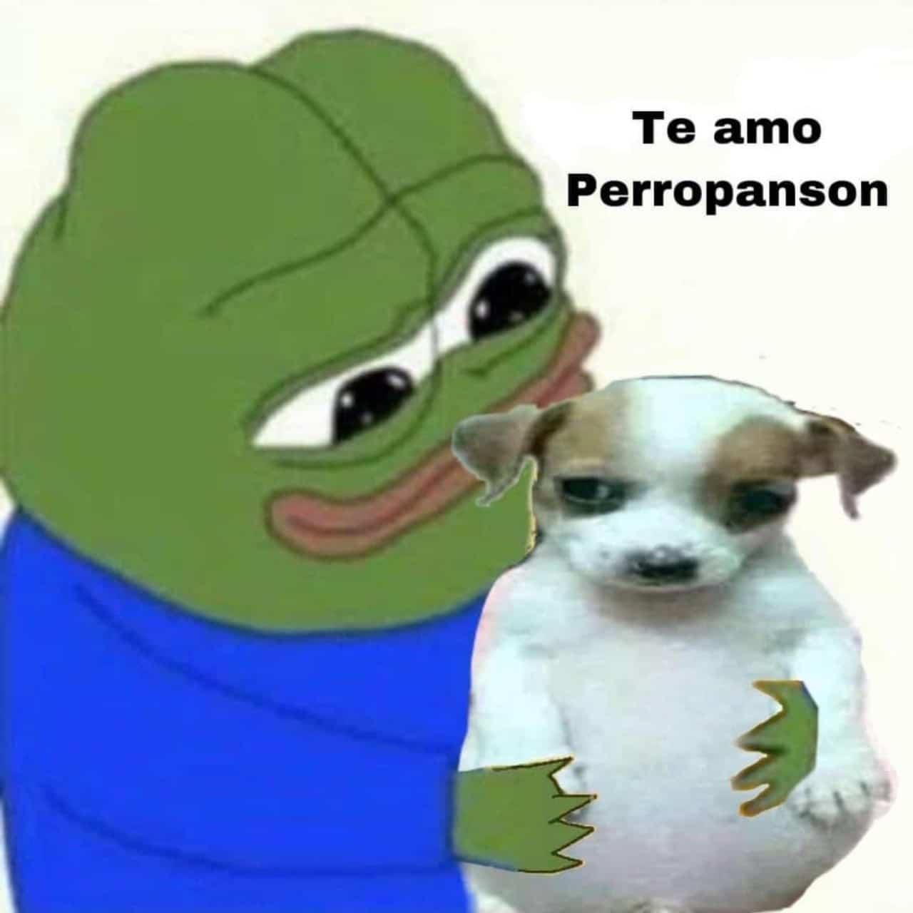 meme te amo perrito panson